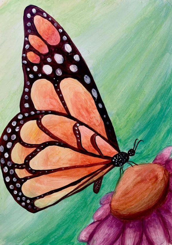 curs-pictura-desen-online