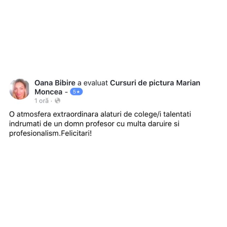 testimonial-curs-pictura-artretreat-terapie-prin-arta-4